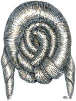 1839-25