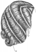 coiffure-femme-1930-006
