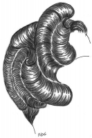 coiffure-femme-1930-030