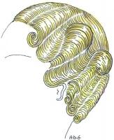 coiffure-femme-1930-085