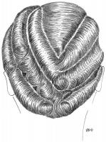 coiffure-femme-1930-049
