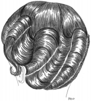 coiffure-femme-1930-056