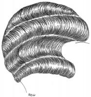 coiffure-femme-1930-059