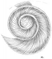 mise-en-plis-technique-galerie-20