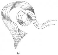 mise-en-plis-technique-galerie-39