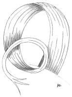 mise-en-plis-technique-galerie-41