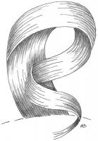 mise-en-plis-technique-galerie-61