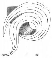 mise-en-plis-technique-galerie-12
