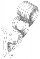 mise-en-plis-technique-galerie-42