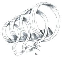 mise-en-plis-technique-galerie-59