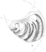 mise-en-plis-technique-galerie-67