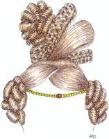 1830-41