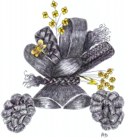 1830-44
