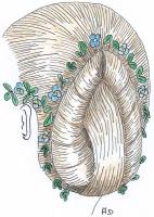 1837-33