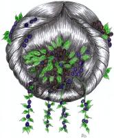 1853-26