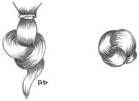1867-08