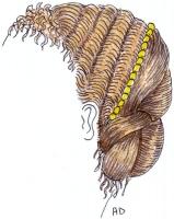 1879-02