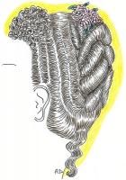 1896-02